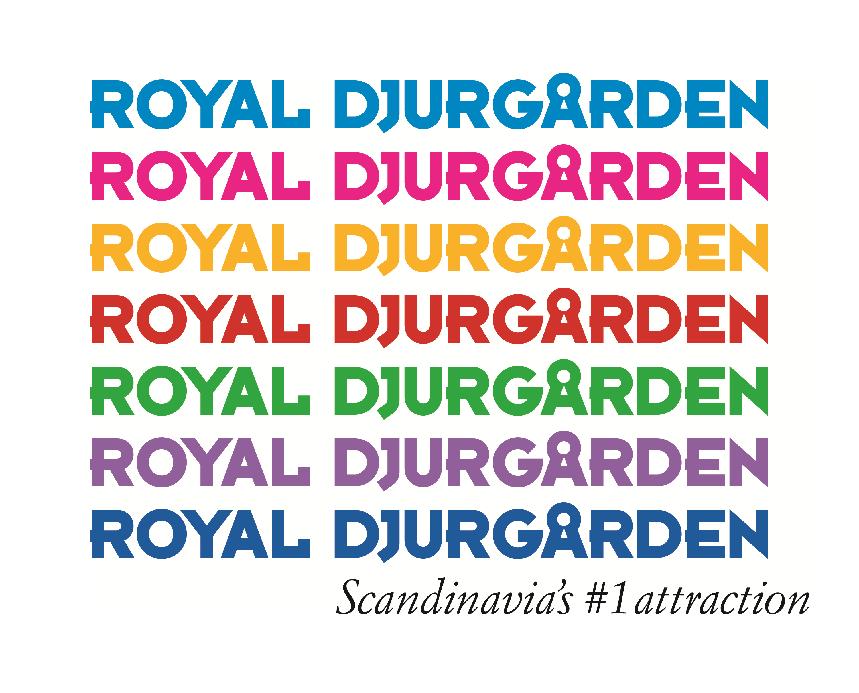 Royal Djurgården custom font logotype created by the design team at UP THERE, EVERYWHERE