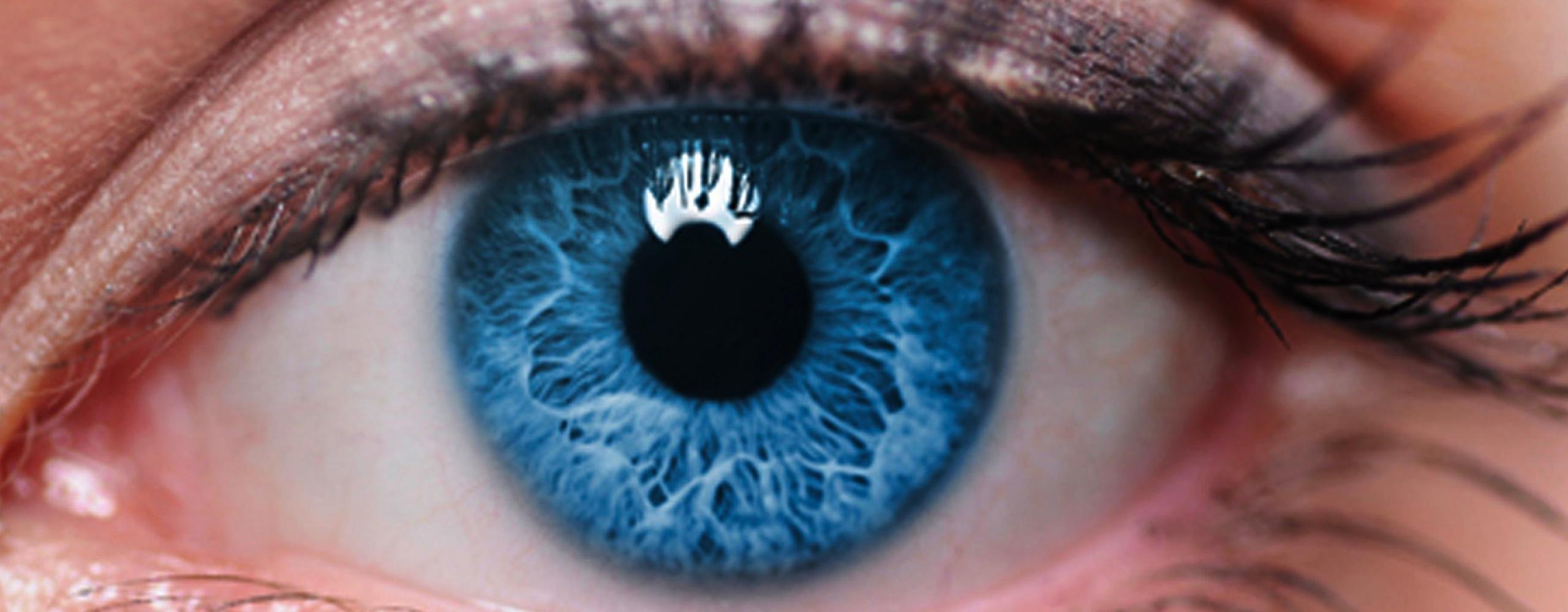 Tecan: Bringing a life science brand into focus