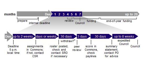 NIH website-graphic-time-review-funding.png