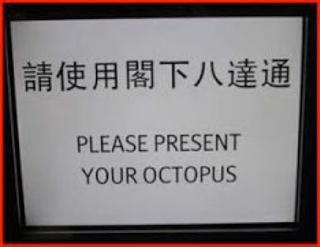 Branding-fails-translation errors-present-octopus