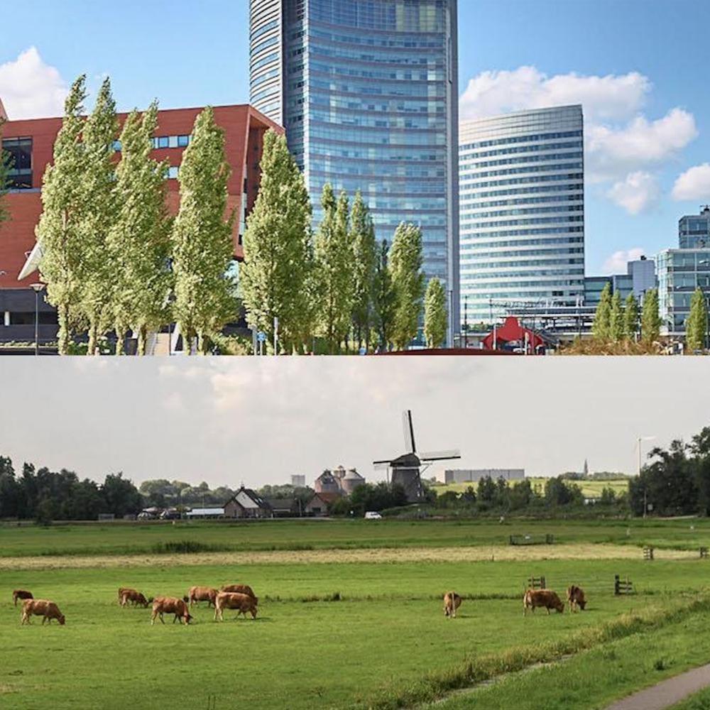 Repositioning Haarlemmermeer as Amsterdam Airport City