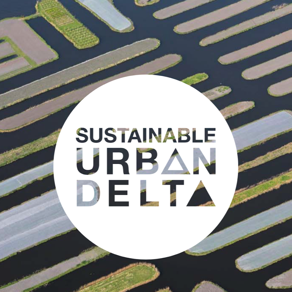 Developing positioning for the Dutch Sustainable Urban Delta